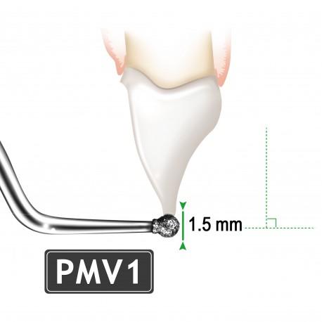 INSERT PMV1