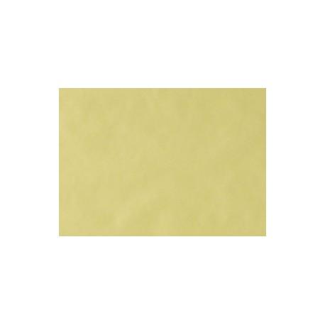 MONOART PAPIER TRAY COULEUR JAUNE (BOITE DE 250 PIECES)