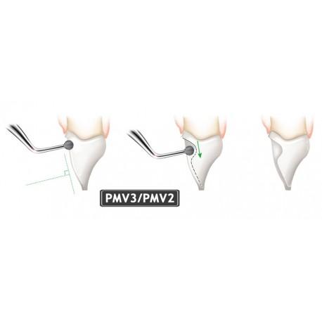 INSERT PMV3