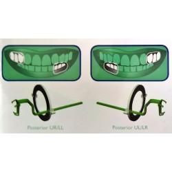 Kit de 10 angulateurs plastique Postérieur (vert) Taille 1