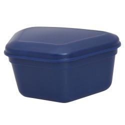 Boites pour prothèse (12 pièces) bleu